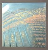 VINEYARD SUMMER by Melanie Guy, Drawing, Scribing, patination & metal powders on pewter